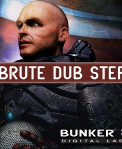 400-brute-dub-step.jpg